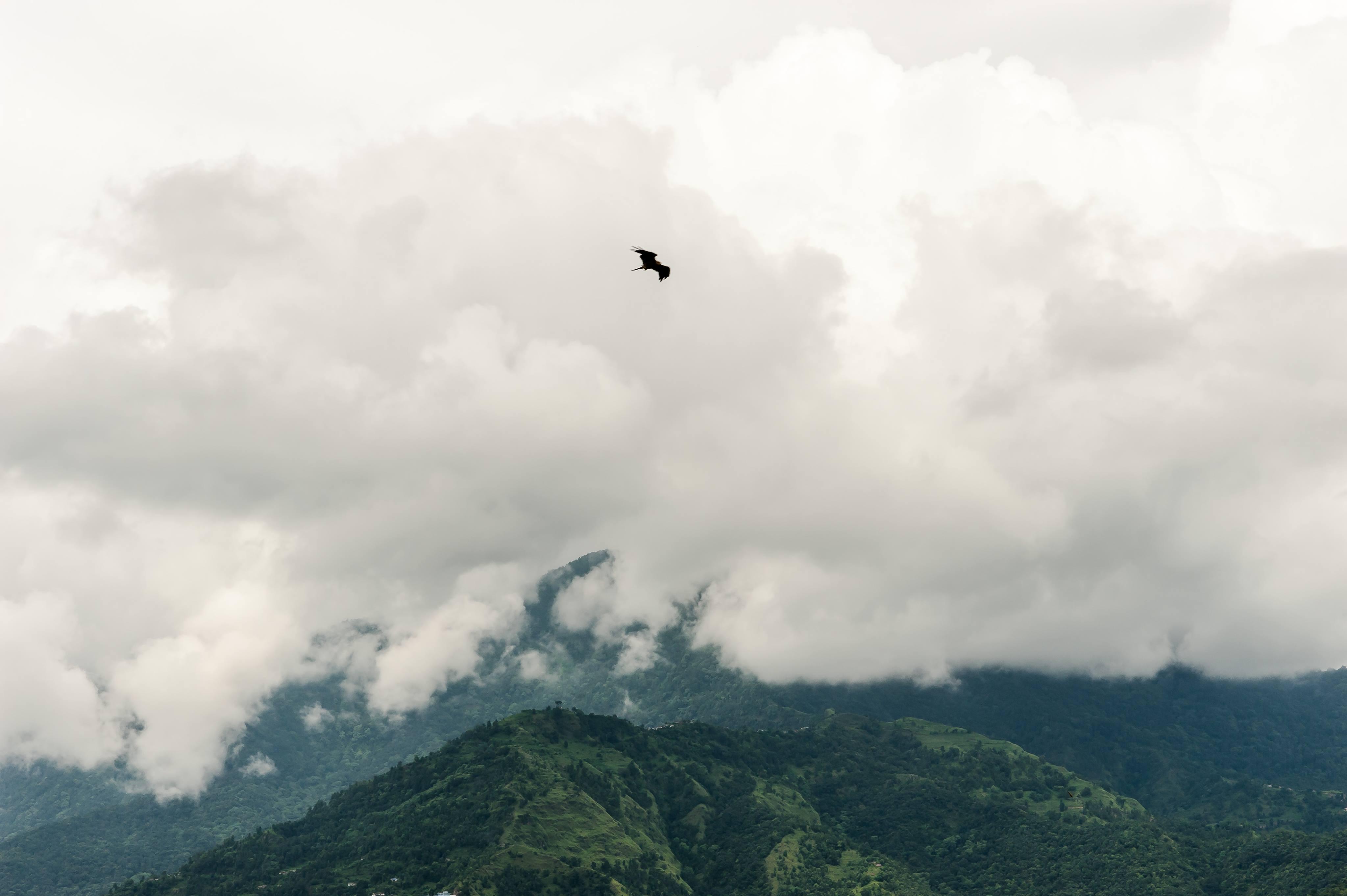 Pokalbiai prie arbatos: Nepalas